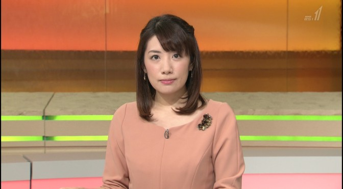 「国際報道2015」で見る藤田真奈美